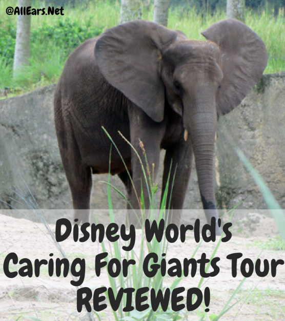 Disney World's Caring For Giants REVIEWED!