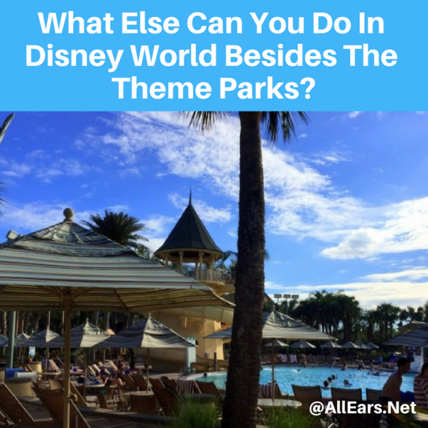 Beyond Disney World Theme Parks