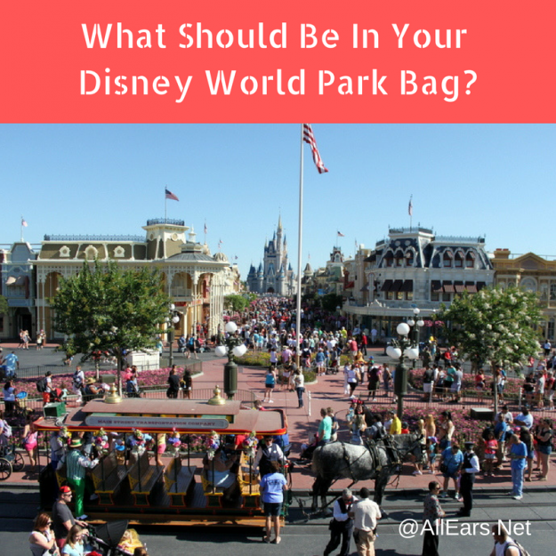 What Should Be In Your Disney World Park Bag?