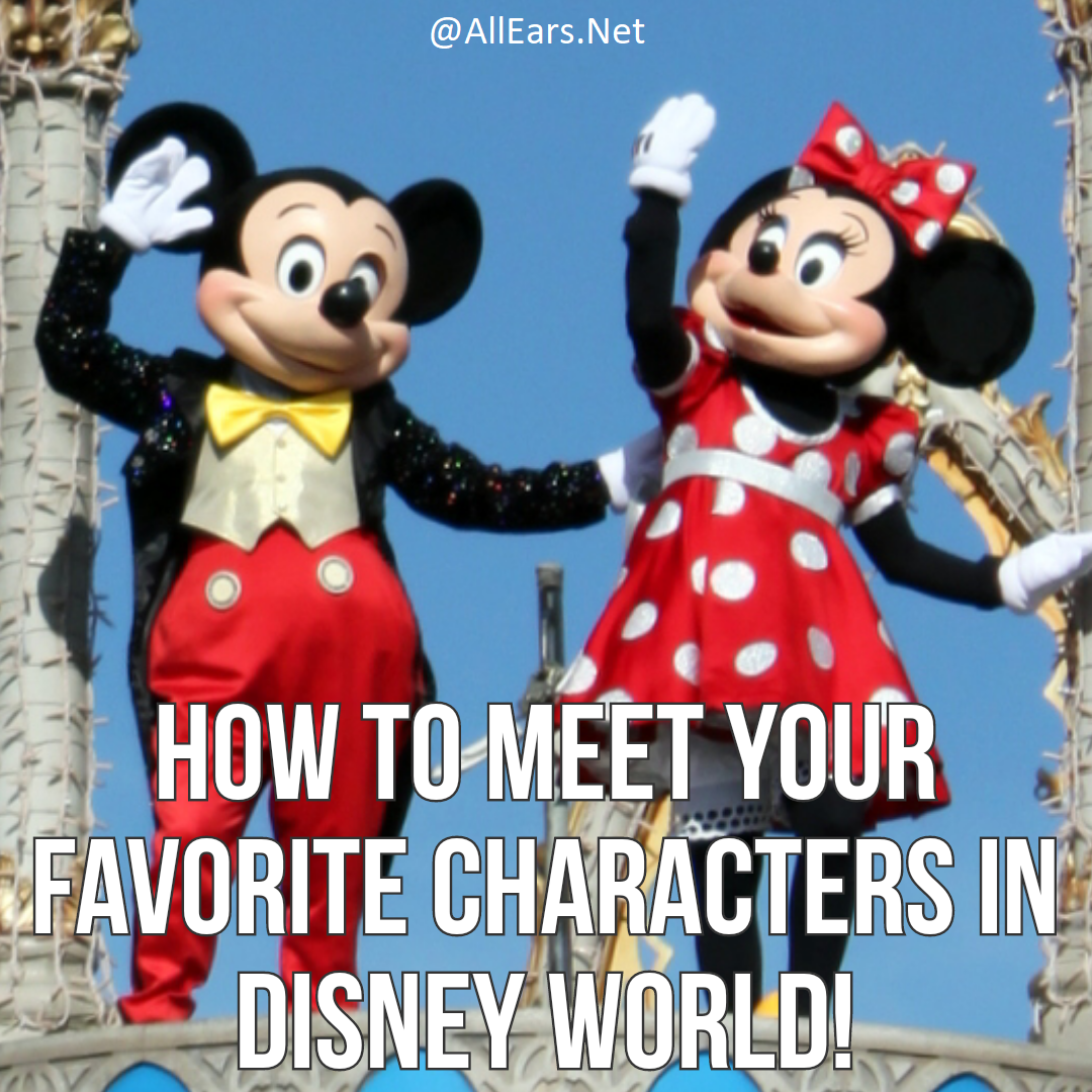 Walt Disney World Character Meet And Greet Faq Allears