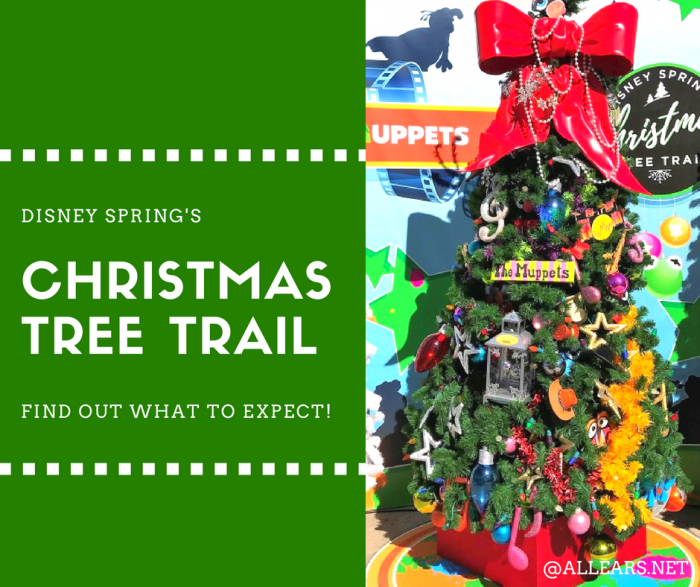 Disney World Christmas Tree Trail