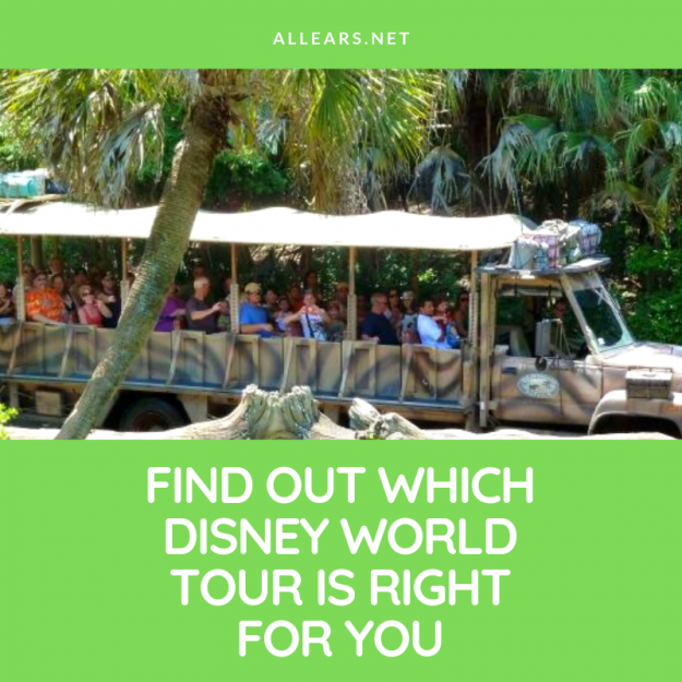 Disney World Tours