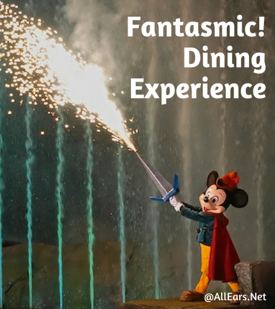 Disney World Fantasmic Dining Experience