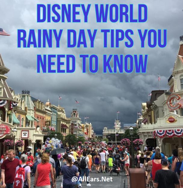 Disney World Rainy Day Tips