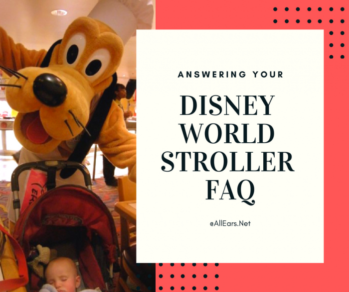 Disney World Stroller FAQ