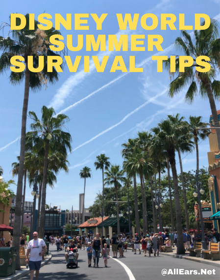 Disney World Summer Survival Tips