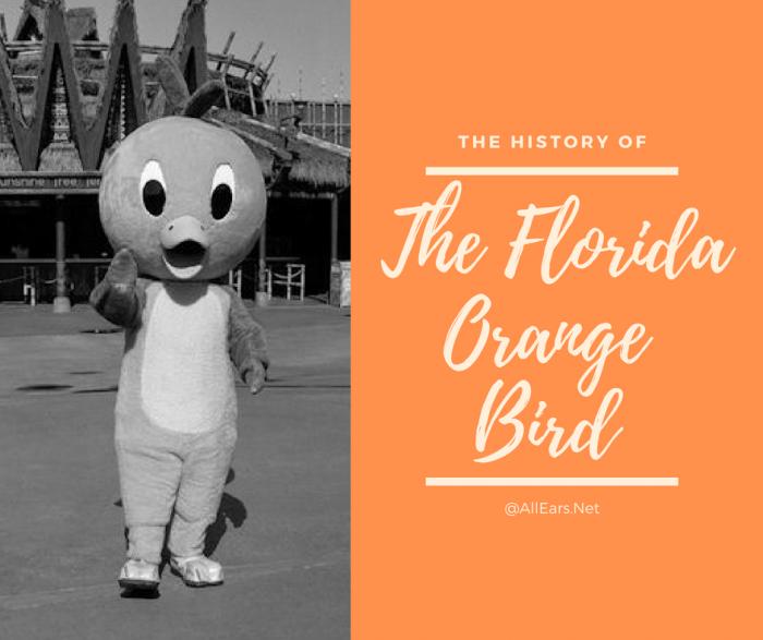 Disney World Florida Orange Bird