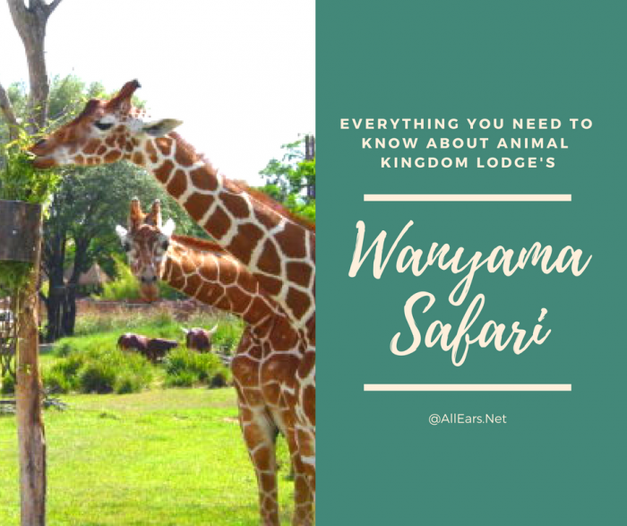 Disney World Wanyama Safari