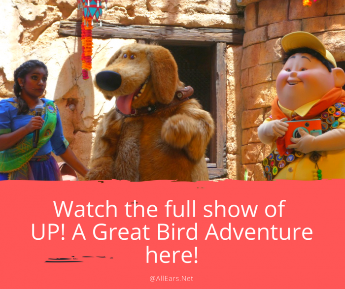 UP! A Great Bird Adventure