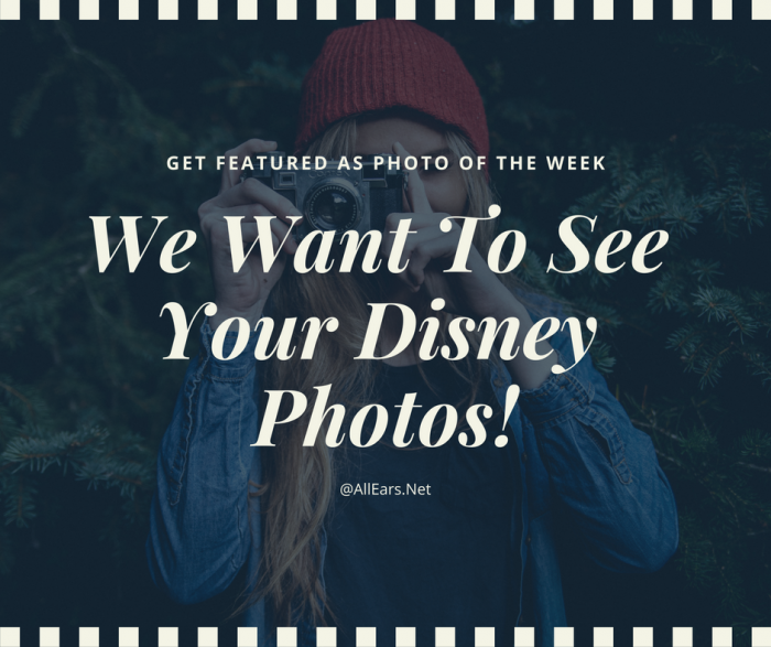 Submit Your Disney Photos