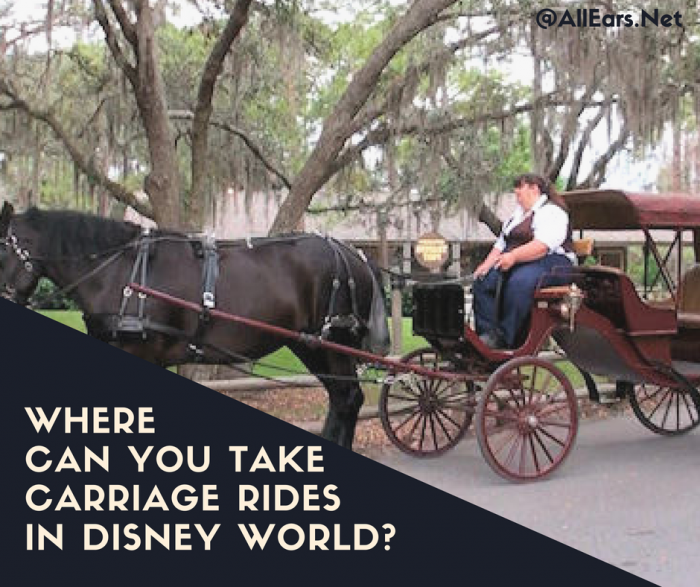 Where you can tak horse-drawn carriage rides in disney world