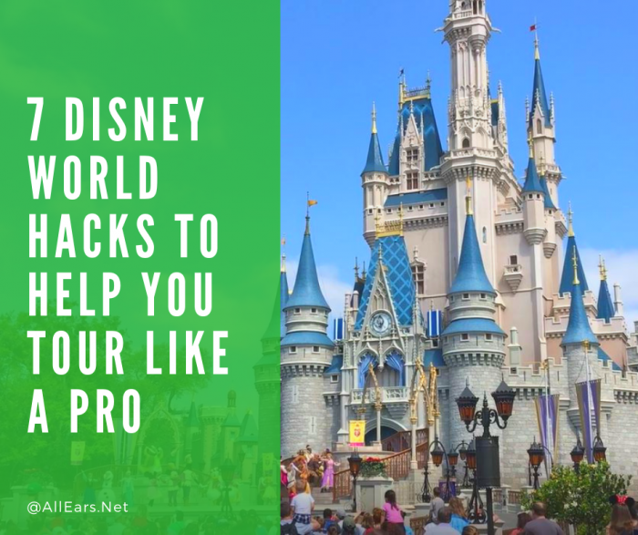 7 Disney World Hacks to Help You Tour Like a Pro!