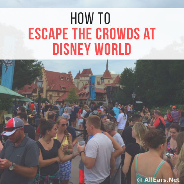 Escape the crowds at Disney World