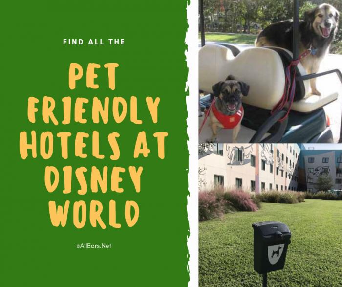 Pet Friendly Disney World Hotels