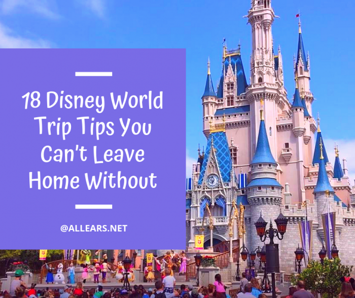 18 Disney World Trip Tips You Can't Leave Home Without