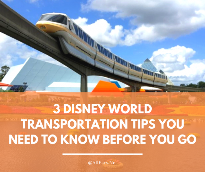 3 Disney World Tips You Need To Know Before You Go