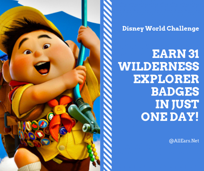 Earn 31 Wilderness Explorer Badges in Just One Day!
