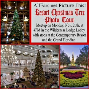 Resort Christmas Tree Photo Tour