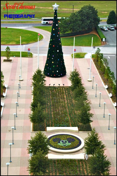 Contemporary Resort's Holiday Promenade 2008