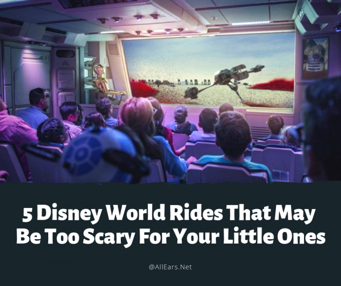 5 Disney World Rides That May Be Too Scary for Your Little Ones