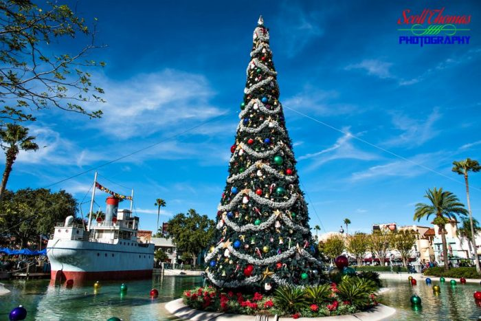 Disney's Hollywood Studios Christmas Tree