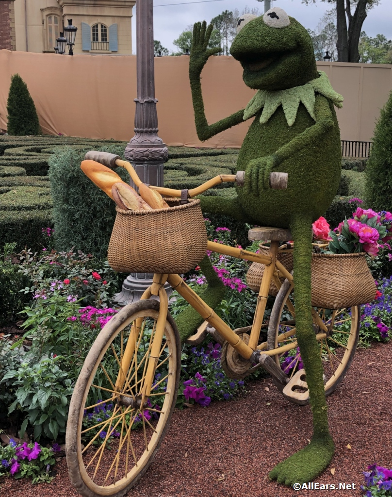 Kermit at the Flower and Garden Festival