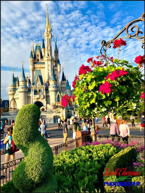 iPhone Cinderella Castle
