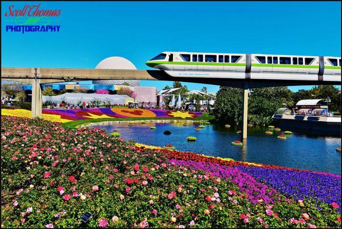 Celebrity Dining: Monorail Transportation