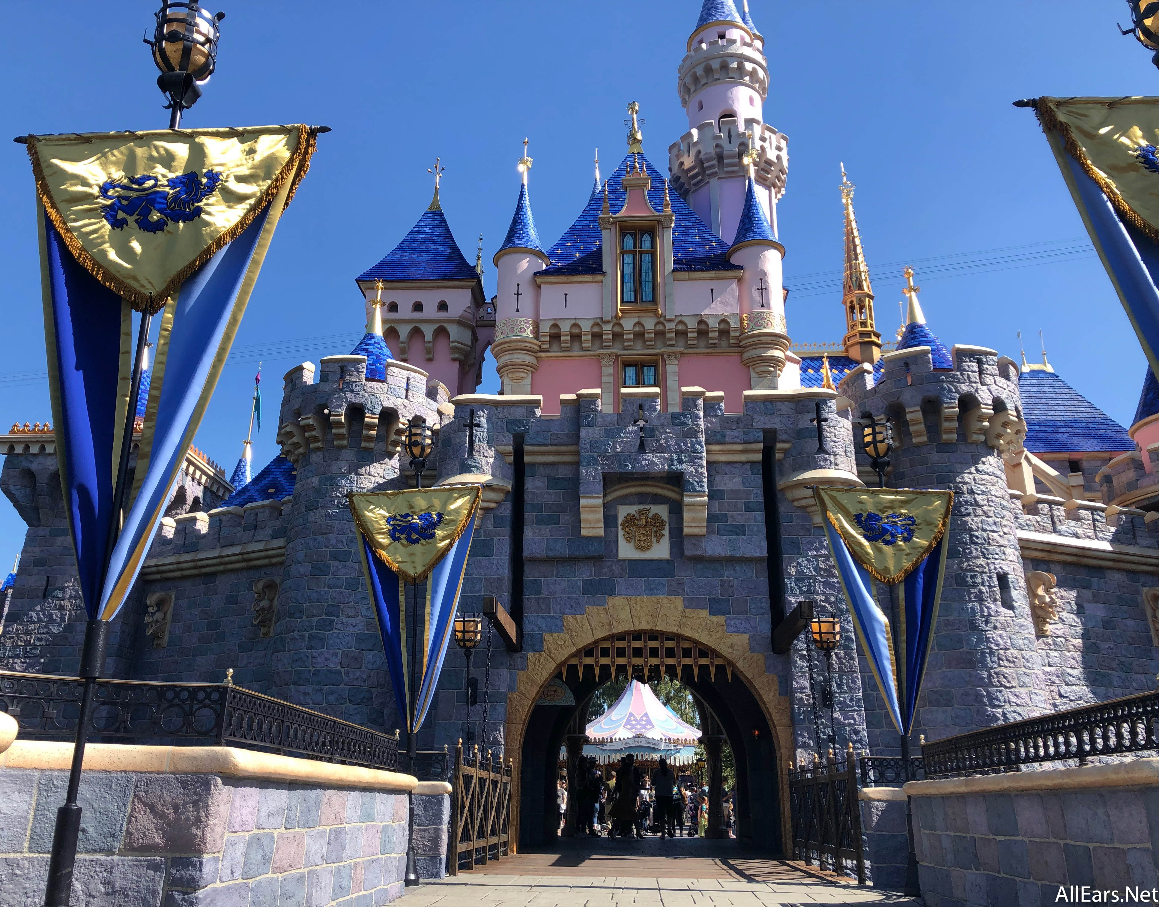 Disneyland's Sleeping Beauty Castle Opens After Months of ...