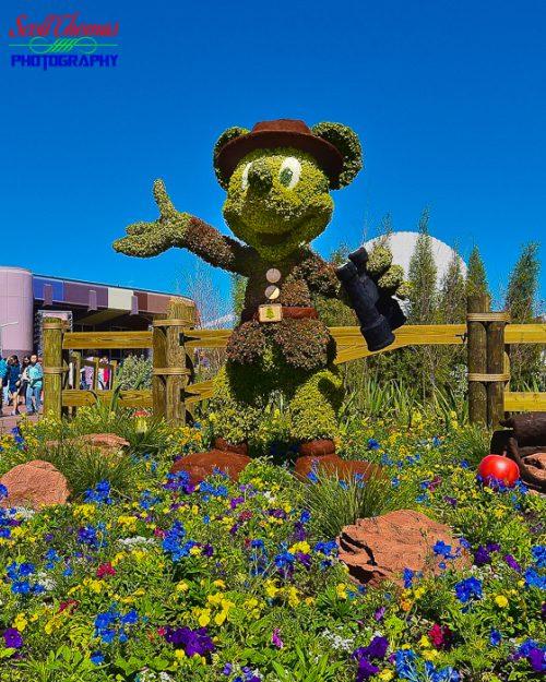 Ranger Mickey Crop 2