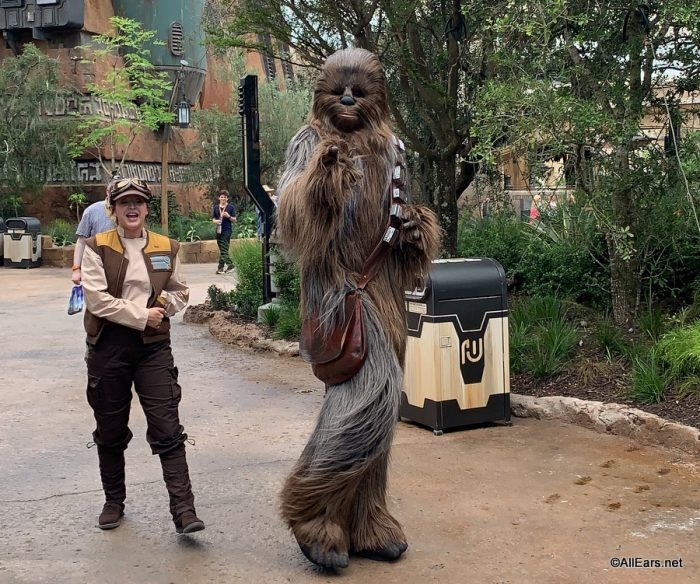 Chewbacca in Galaxy's Edge