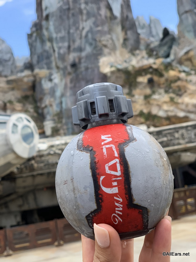 Don't Fly With Those! TSA Bans Star Wars: Galaxy's Edge Coca