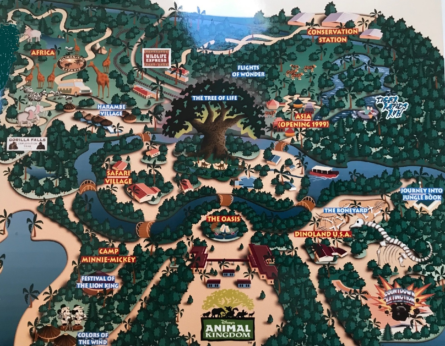 Since opening in 1998, Animal Kingdom has seen some wild changes