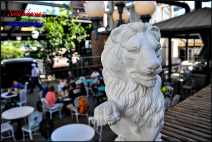 Backlot Express Lion Prop