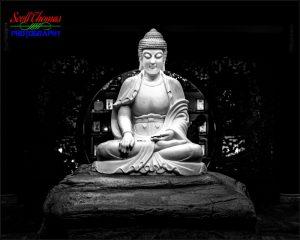 China Store Buddha