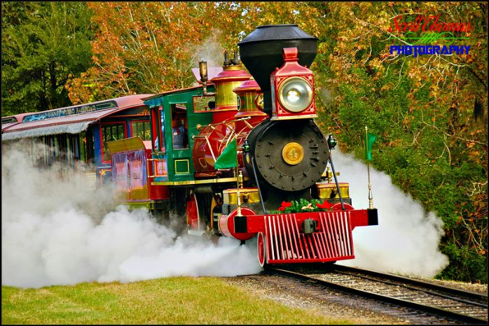 Roy O Disney Steam Train