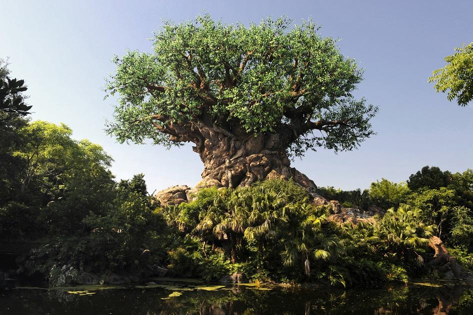 We've Ranked the Lands in Disney's Animal Kingdom - AllEars.Net
