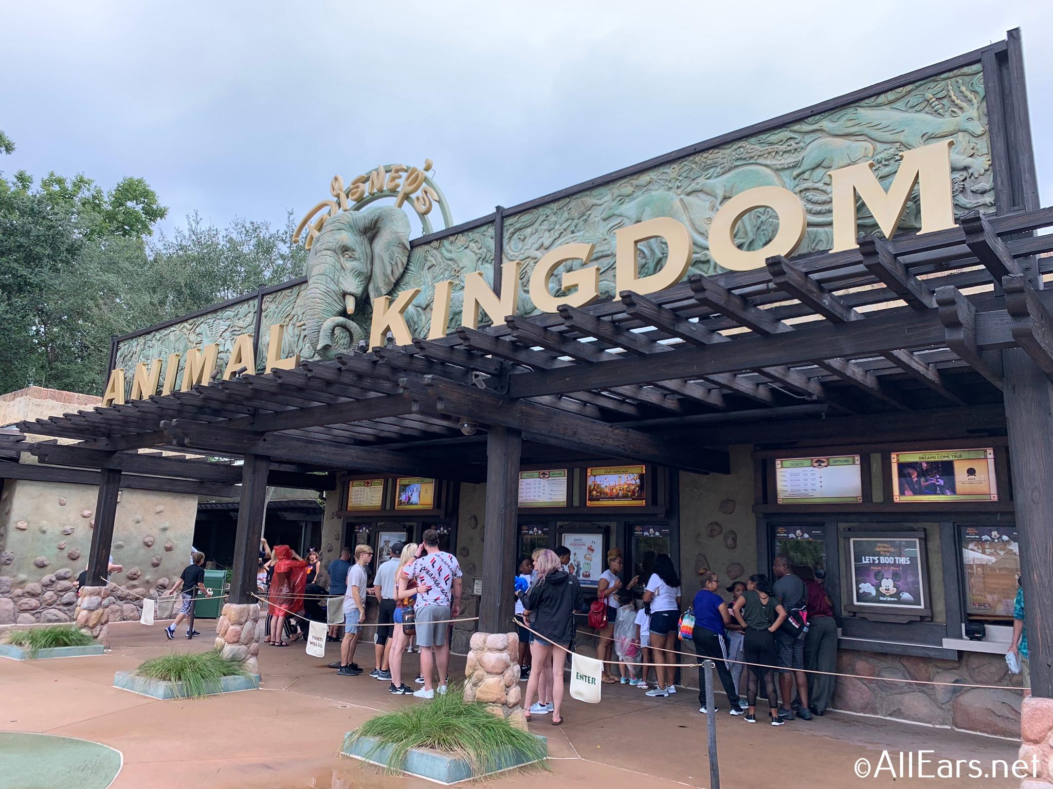 Details On Reopening Of Walt Disney World Resort Hotels
