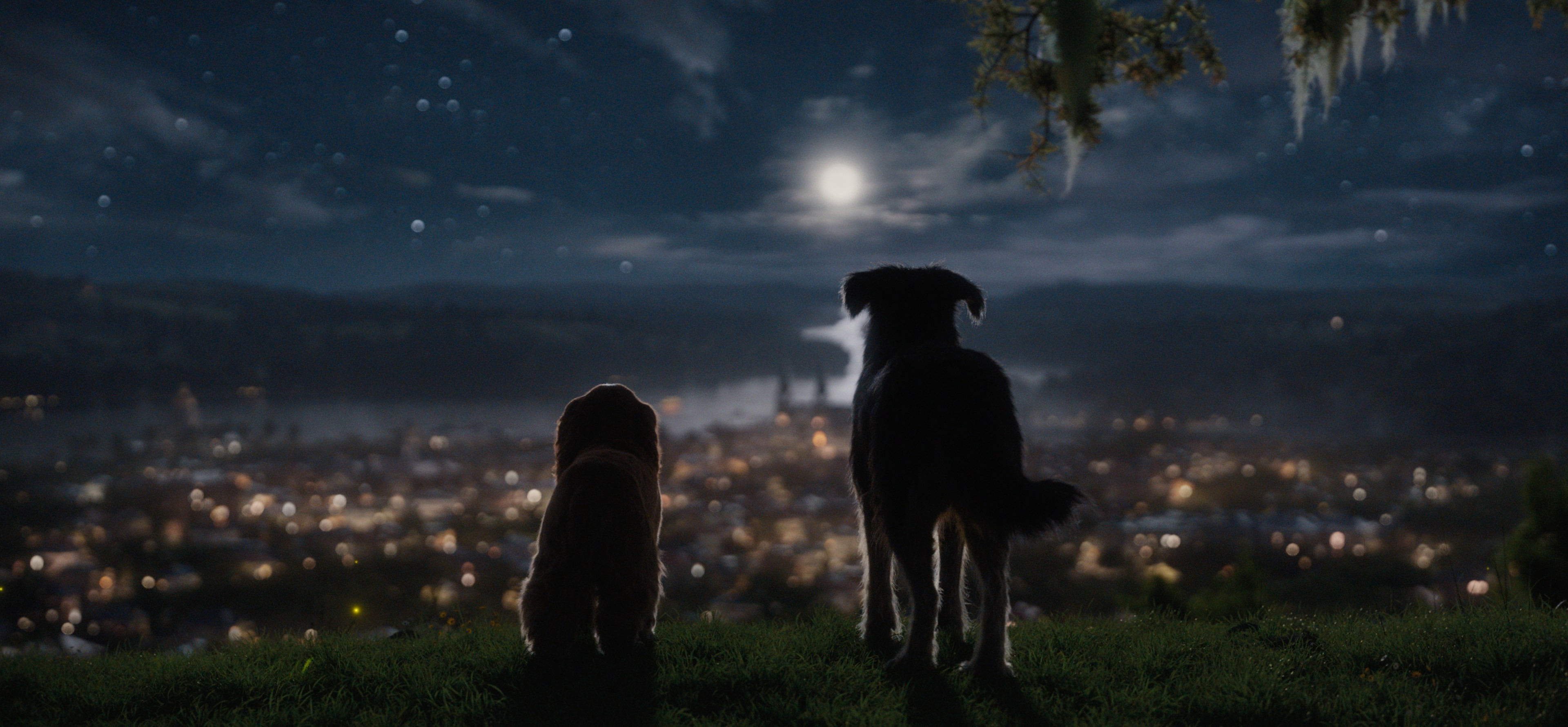 New Trailer Released For Disney S Live Action Remake Of Lady And The Tramp Allears Net