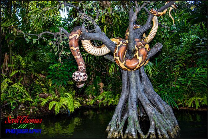 Jungle Cruise Python
