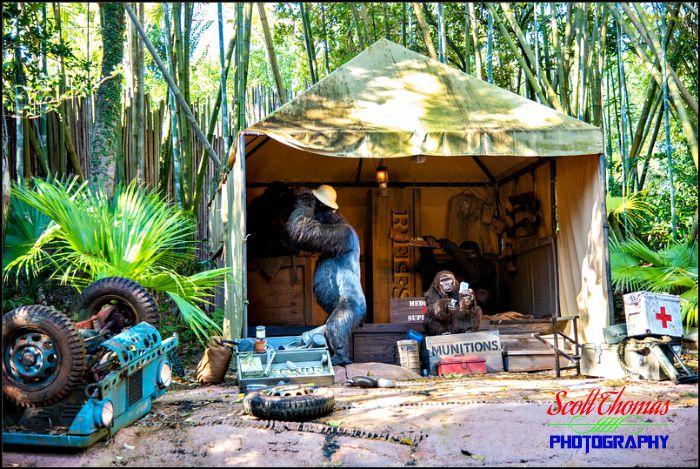 Jungle Cruise Camp