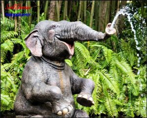 Jungle Cruise Bathing Elephant