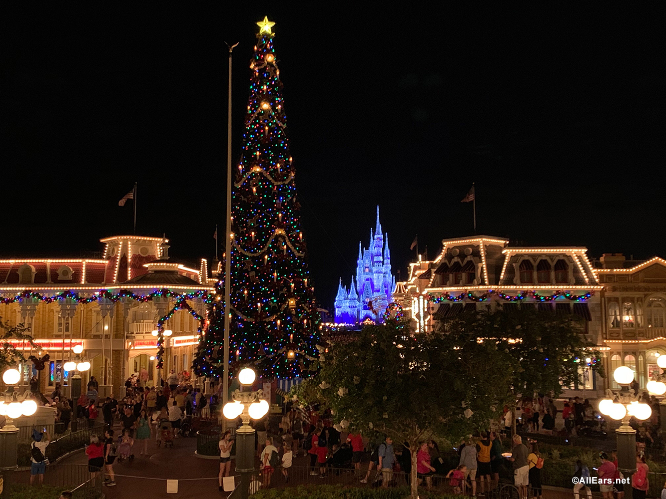 Smile! The Best Spots for your Family's Christmas Pictures at Walt Disney World - AllEars.Net