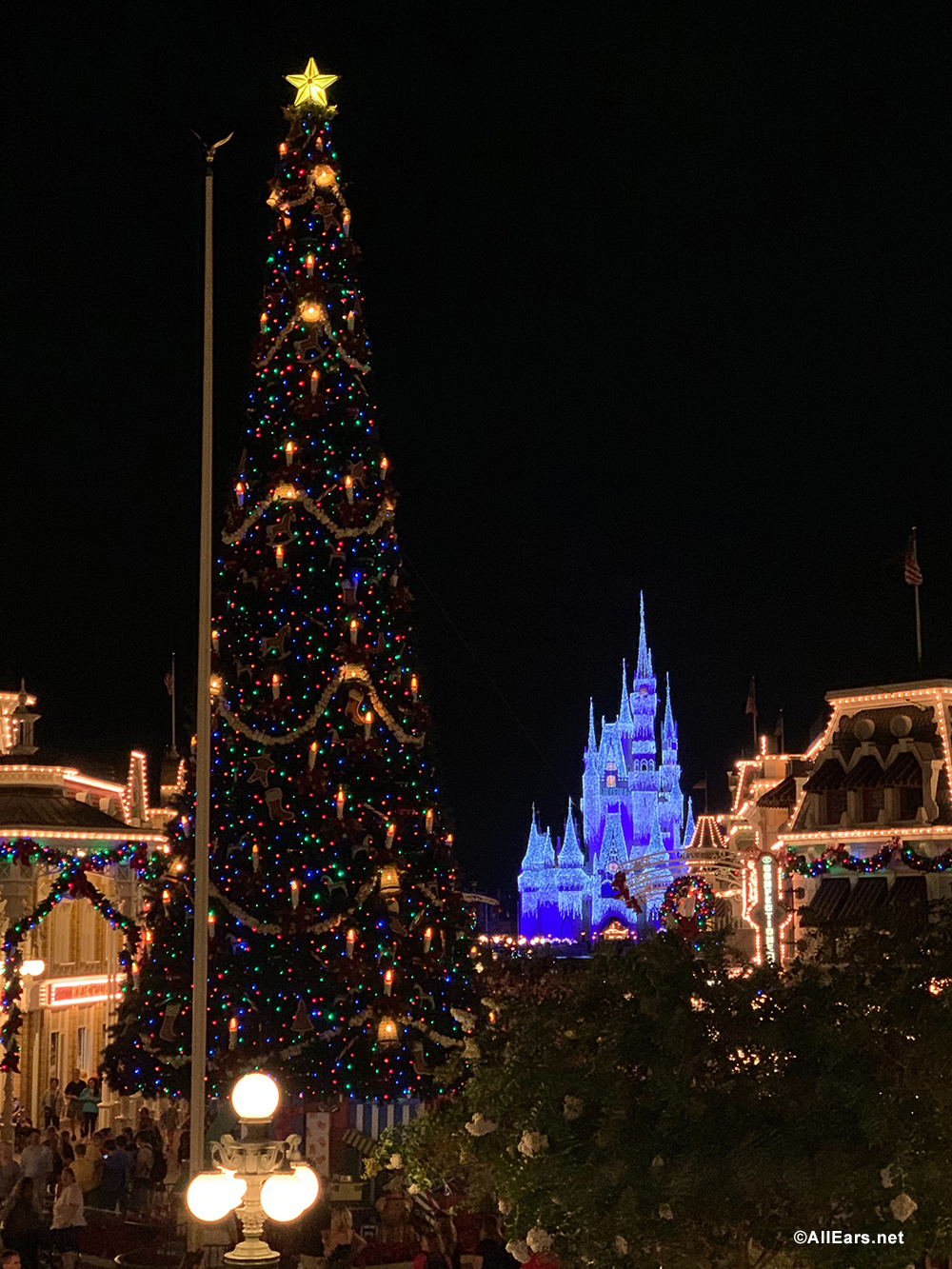 Smile The Best Spots For Your Family S Christmas Pictures At Walt Disney World Allears Net