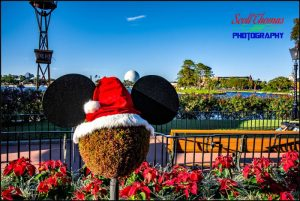 Holiday Mickey Topiary in Epcot