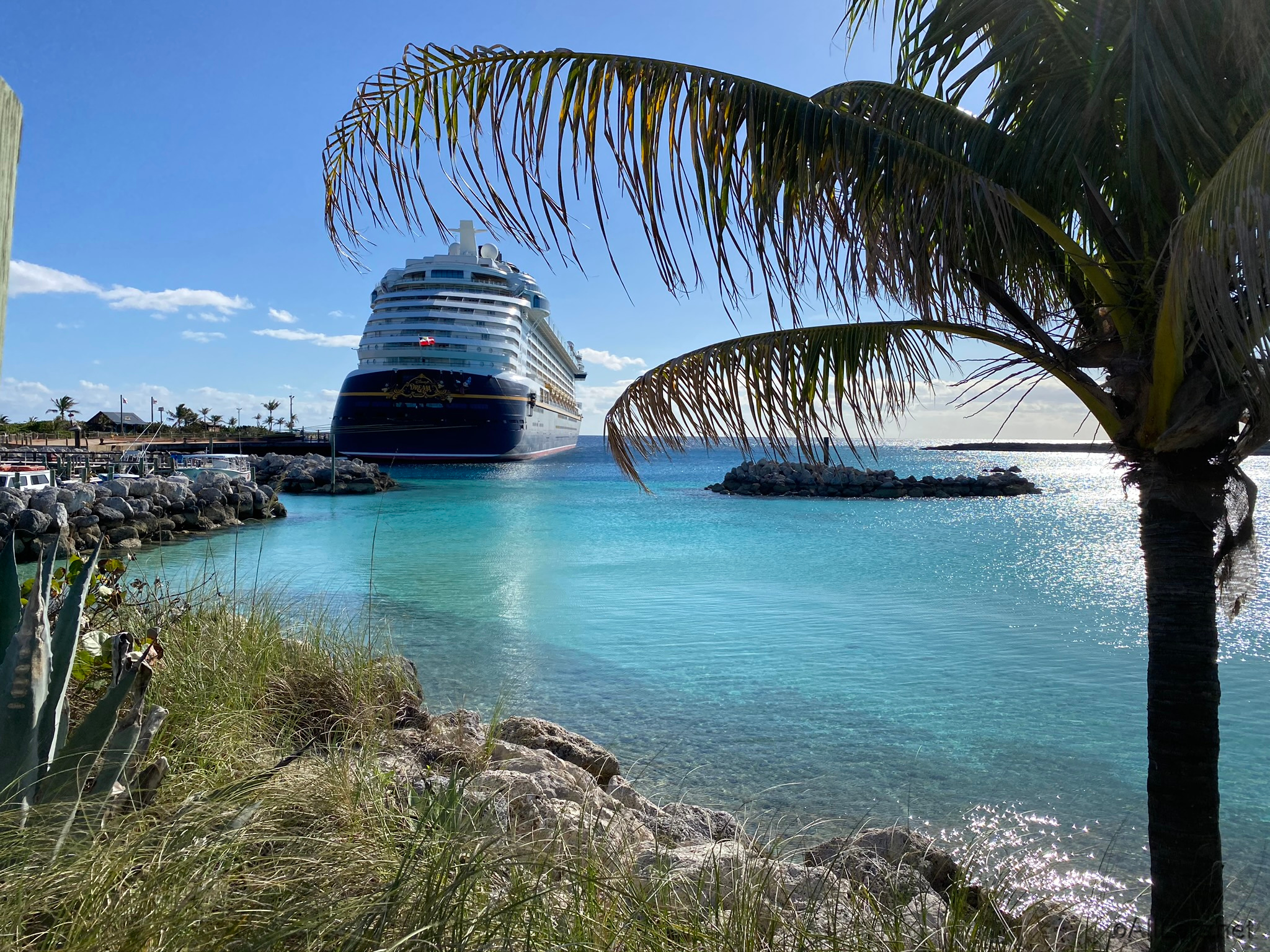 News The Disney Cruise Line Has Suspended Disney Dream And Fantasy Departures Through September Allears Net