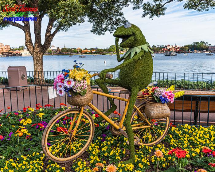 Flower and Garden Festival Kermit Topiary 2020