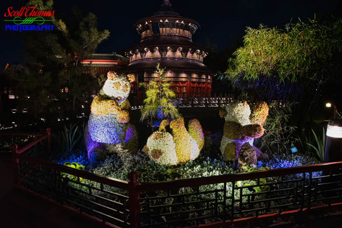 Flower and Garden Festival China Panda Topiaries 2020