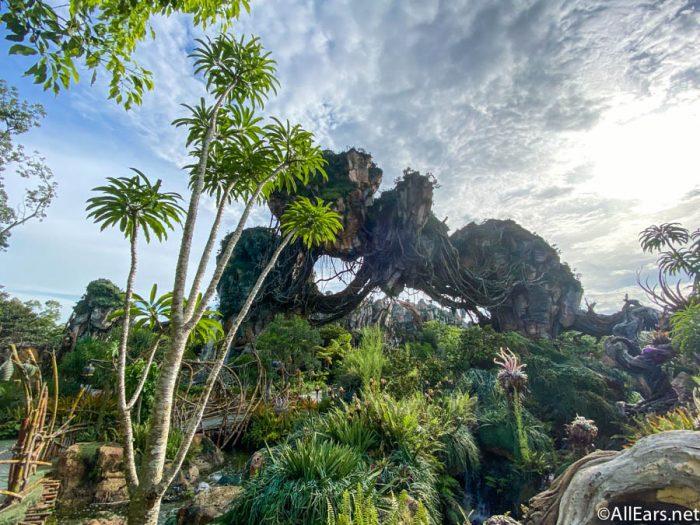 Pandora Floating Mountians Animal Kingdom