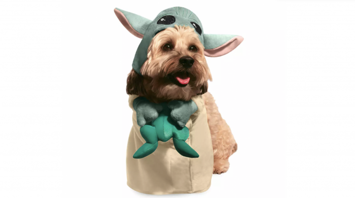 Your Furry Friend Can Dress Up as Baby Yoda (and Much More) for Halloween! - AllEars.Net